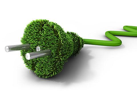 groen veilig snel