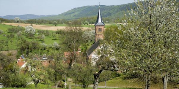 Eden-France: (c) Yvon Meyer - Parc des Vosges du Nord
