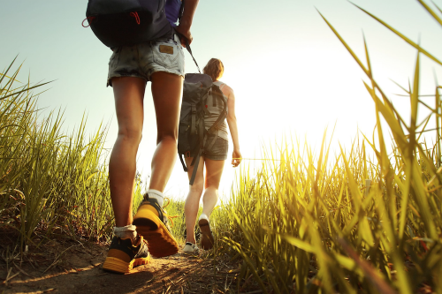 Longlist-wandelroute-van-het-jaar-2019