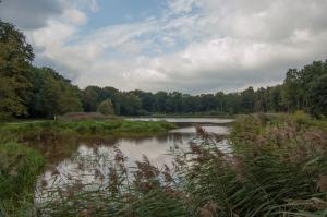 Ten-Haagdoorn
