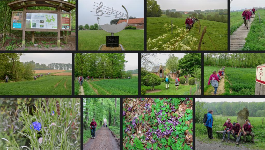Getuigenheuvels-Oost-Vlaanderen