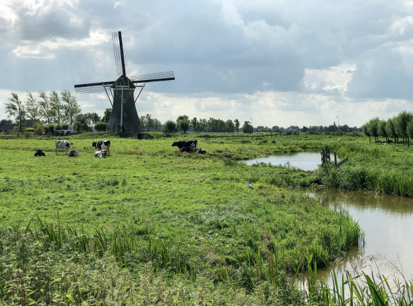 Coronamars Nederland