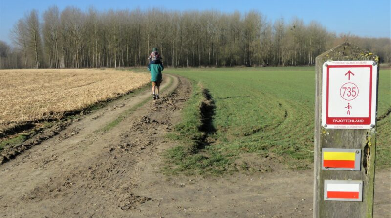 Hogebossen wandeling Vlezenbeek