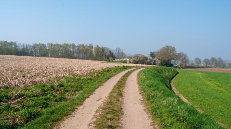 hageland-landschap